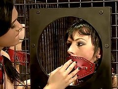 Two sexy brunettes get fucked in mouth..