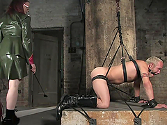 Redhead Dominatrix Playing with Guy..