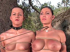 Bondage Outdoors With Two Busty Sluts