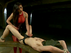 Blake and Venus Lux love pounding each..