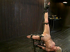 Tied up Lorelei Lee gets her vagina..