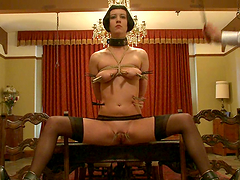 Horny Brunette's Tied Up And..