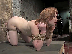 Sexy Redhead Swallows Her Master's..