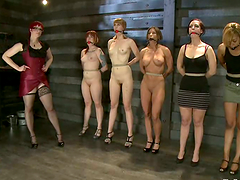 Five sexy sex slaves get humiliated by..