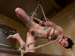 Tattooed Broad Gagged & Tied Up