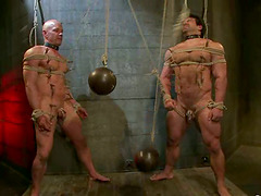 Crazy Bondage and Gay Ass Fucking in..
