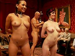 Sex Slave Bitches Suck Cock like a..
