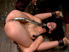Hot Babe's Tortured By Her Master