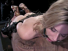 Hot Blonde's Tortured In Bondage Clip