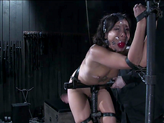 Sexy Asian Babe Has Fun With Tortured..