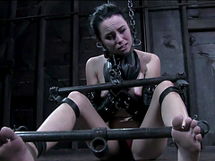 Sexy Brunette's Tortured And Pleased..