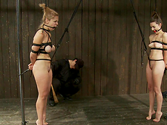 Sadist bondage scene with hot chicks