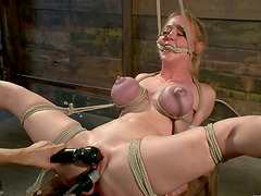 Lovely Darling gets hog tied gets..