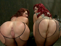 Two redheads dominated by a brunette..