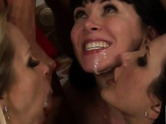 Wild Group Sex Orgy In Bachelorette..
