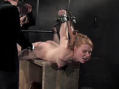 Caged girls get dominated and tortured..