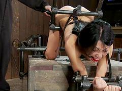 Asian Tia Ling getting anal fucking..