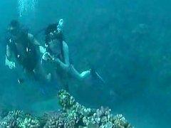 海底做爱的感觉