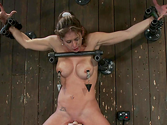 Busty chick tied on top of a Sybian..