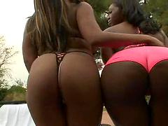 A couple of hot ebony sluts gettin..