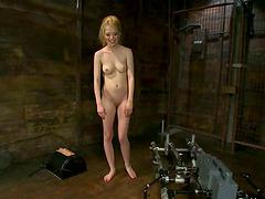 Slim blonde Tiffany Fox gets her pussy..