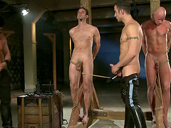 BDSM gay group sex with two weak..