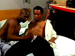 Two bisexual black studs enjoy some..