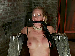 Cute blonde gets her vag toyed to..