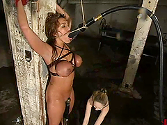 Ava Devine gets toyed and then watered..