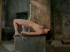 Brunette Brooke Lee Adams gets tied up..
