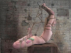 Tattooed blonde gets tied up and..