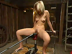 Hairy pussy of Kimberly Kane is..