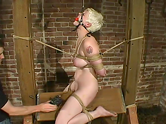 Sizzling blond slave Rose is standing..