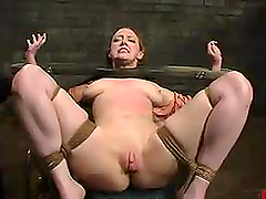 Honey is hogtied and thrown in the..