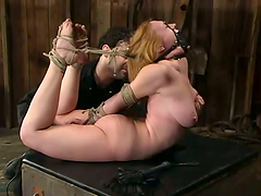 Naughty chick Darling gets hogtied and..