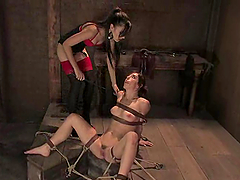 Riley Shy gets bound and humiliated by..