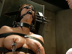 Brunette Taken Home, Bound, Gagged &..