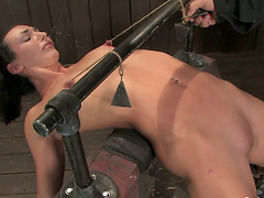 Dominated Girl Ends with Mouse Trap on..