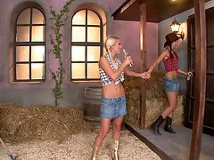 Naughty Pigtailed Cowgirls Having..