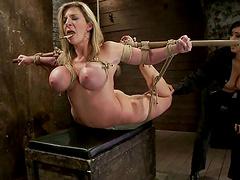 Big tittied Sara Jay gets tied up and..
