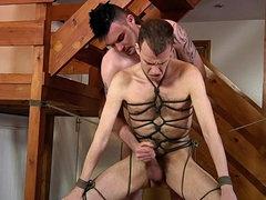 Gay bondage and anal porn