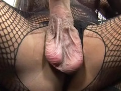 Masturbating shemale in fishnet body..