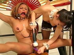 Spectacular Asian Babes Play BDSM..