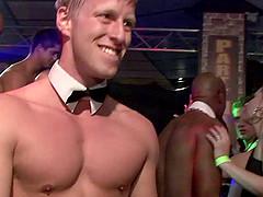 A party transforms into cock-sucking..