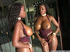 Hot ebony-skinned cougar with huge..