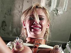 Lesbian BDSM torture when a mistress..