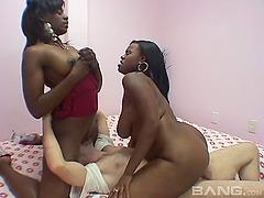 Salacious ebony babes face sits while..