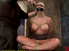 Wildest BDSM Action That You will Ever..