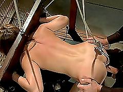 Sexy Brunette Biatch Doggystyle Sex..
