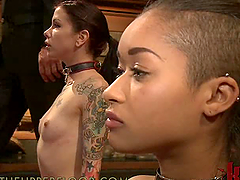 Playing with Two Tattooed Submissive..